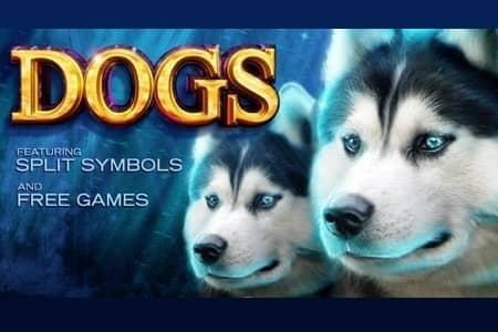 لعبة سلوتس اون لاين Dog Slots
