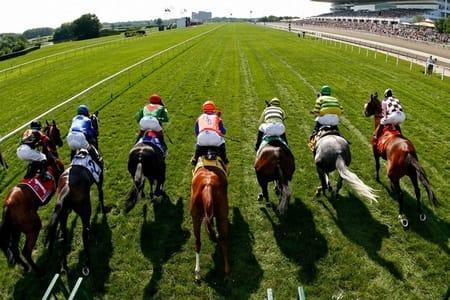 أفضل ثلاثة أفلام حول سباق الخيول